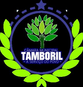logo_cmt-04